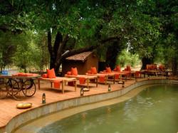 Pool - Taj Mahua Kothi Bandhavgarh
