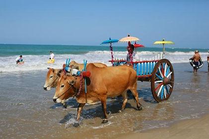 Chaung Tha Beach - Myanmar