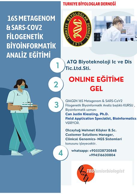 QIAGEN 16S Metagenom   & SARS-CoV2 Filogenetik Biyoinformatik Analiz  eğitim kursu Kopyası