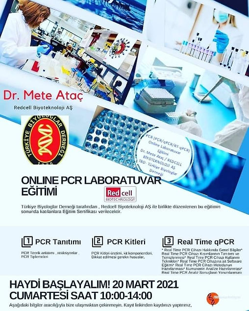 ONLİNE PCR.jpg