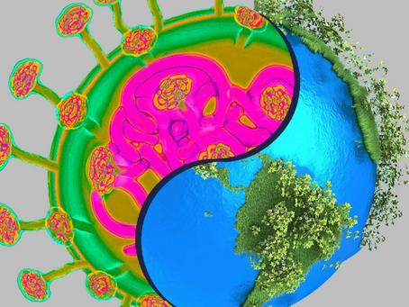 Koronavirüsün insanlığın ekolojik krizden kurtulmasına yardımcı olabileceği 5 yol
