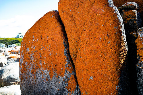 Bay of Fires #12