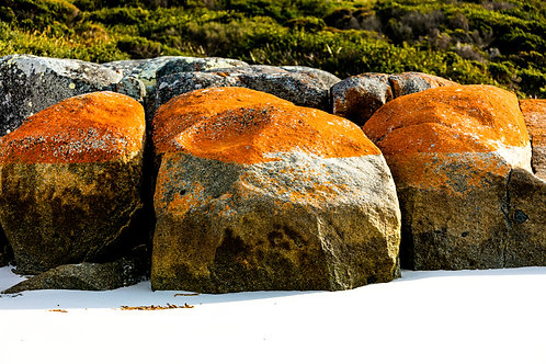 Bay of Fires #15