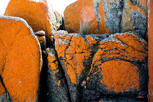 Bay of Fires #10