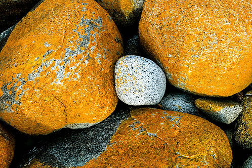 Bay of Fires #27