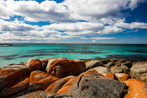 Bay of Fires #4