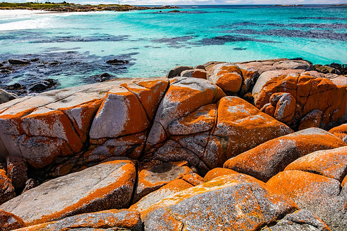 Bay of Fires #5