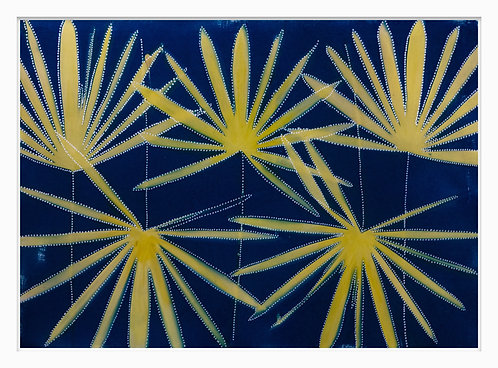 Songlines of Plants Hand Crafted Cyanotype Print #6