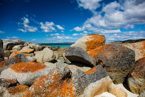 Bay of Fires #7