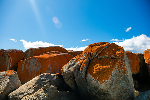 Bay of Fires #9