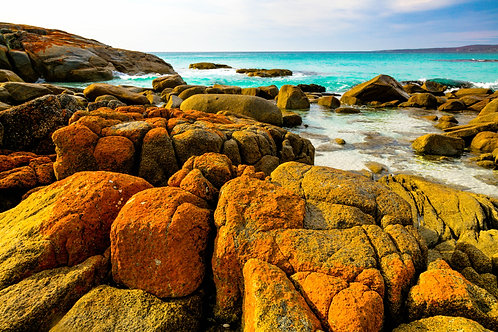 Bay of Fires #19