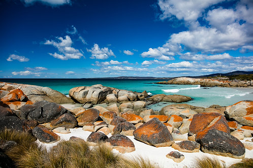 Bay of Fires #1