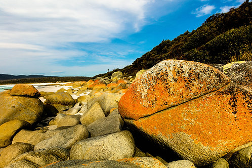 Bay of Fires #31