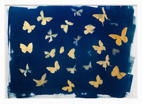 Natural Curiosities Hand Crafted Cyanotype Print #6