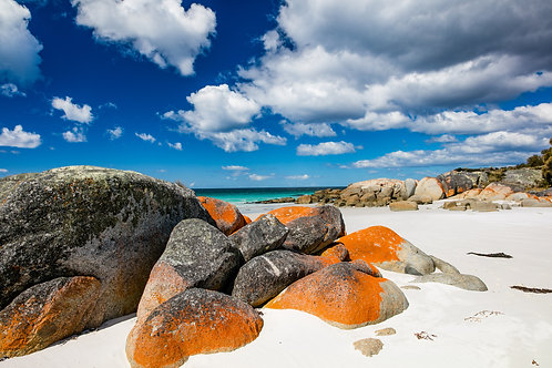 Bay of Fires #13