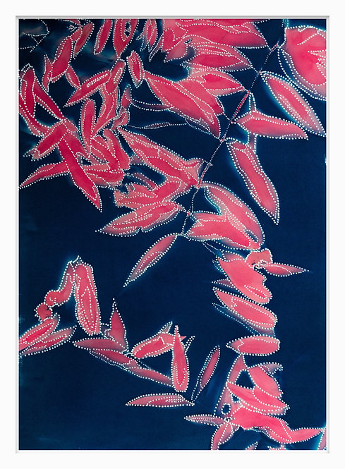 Songlines of Plants Hand Crafted Cyanotype Print #4