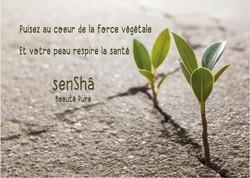 GAMME SENSHA
