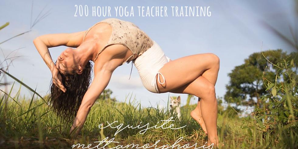 Guest Teacher - Meghan Currie YTT