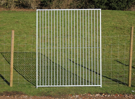 Top Tips To Know BEFORE You Buy A Galvanised Dog Run Panel