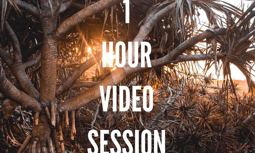 1 Hour. Private 1:1 Session (Remote on Skype or Zoom)