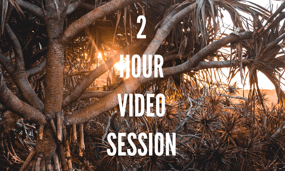 2 Hour Video Session with Shamanic Energy Healing and Clearing