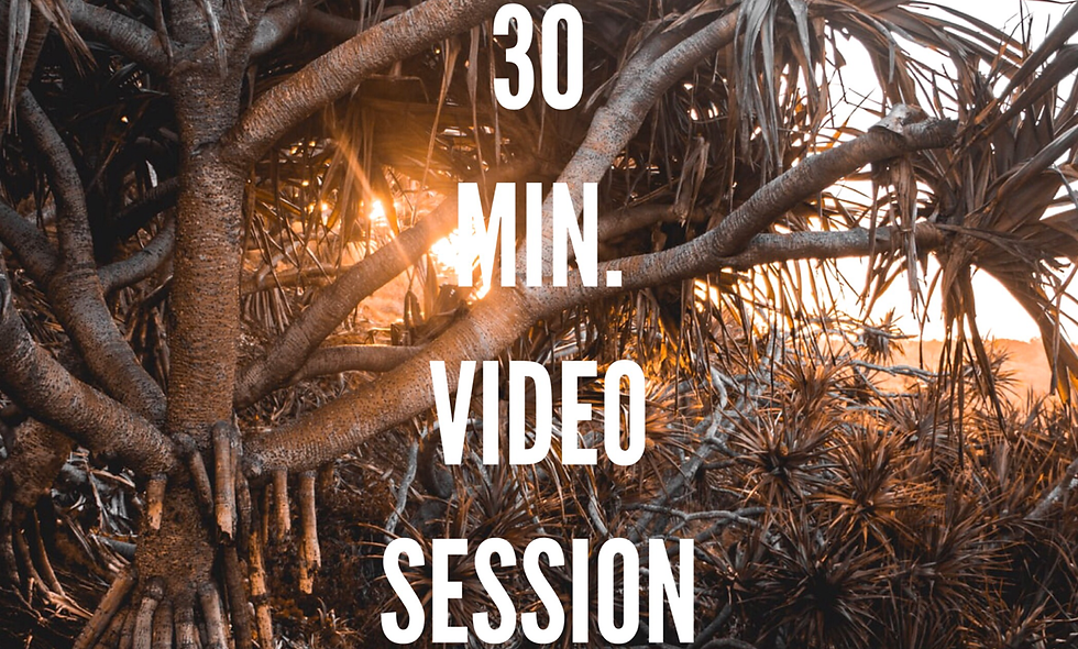 30 Min. Private 1:1 Session (Remote on Skype or Zoom)