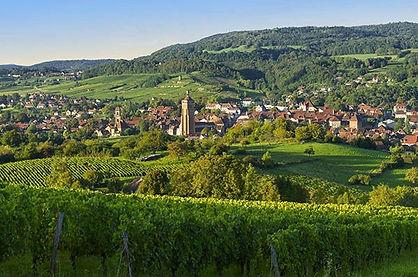 Arbois, première AOC des Vins de France, ville de Pasteur, Jeunet, Hirsinger, vigneronne, UNESCO