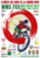 CARTEL-WMS-YGWS-2019-V2-724x1024.jpg