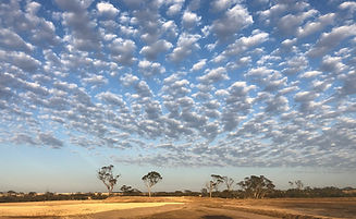 farming field with clouds in the blue sky
