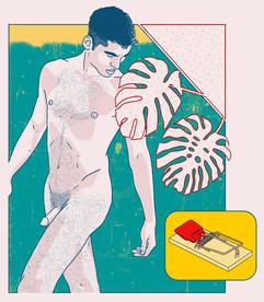 swiss cheese plant_tumblr.jpg