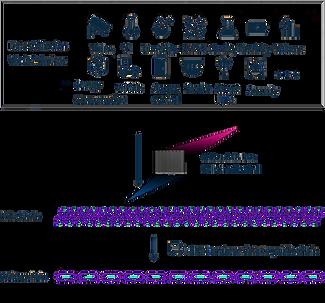 Waltonchain Chain Graphic - sem fundo.pn