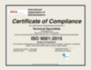 TS - ISO9001 2015.png