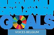 logo SDG voices 2021.png