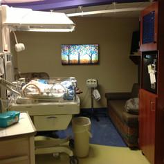 Essentia Health Neonatal ICU