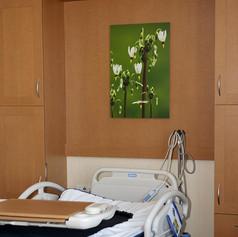 Monroe Clinic Hospital