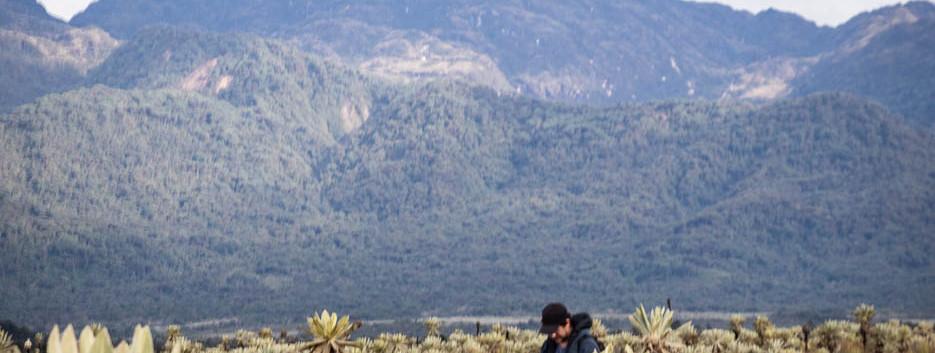 Grabación en el valle de frailejones, La Cocha