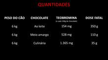 Chocolate é tóxico e venenoso para os cachorros