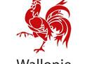 2Nouveau_LOGO_Région_W___Wallonie_-coq_wallonie.jpg