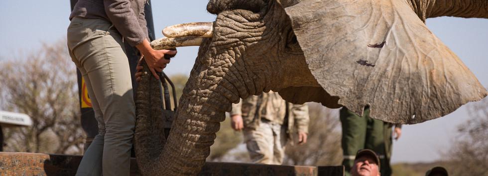 Namibia-36.jpg