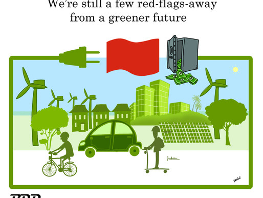 Putting the Red Flag in the Renewable Energy Sector