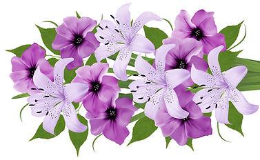 Lily%20Photo_edited.jpg