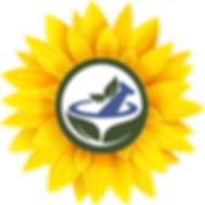 sunflowerrxlogo2-3-20203000x3000.png