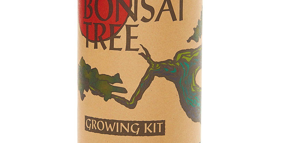 Grow Your Own Bonsai Tree Kit (Japanese Maple)