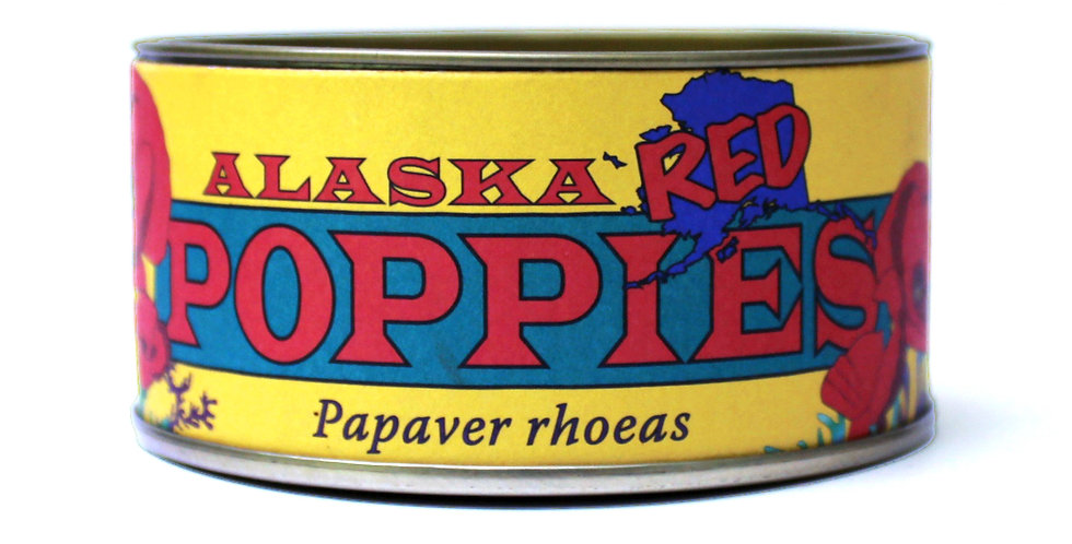 Grow Your Own Alaska Red Poppies Flower Kit