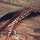Thumbnail: Cherokee
