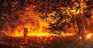 Science_fire_1177959030.jpg