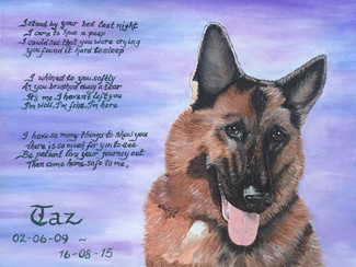 Tribute to Taz