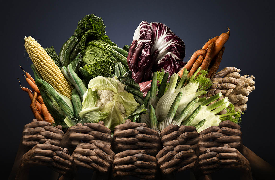 vegetable composition with hands