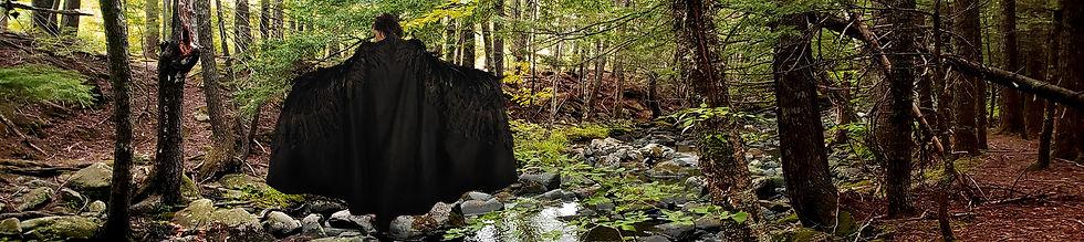 forest_web3.jpg