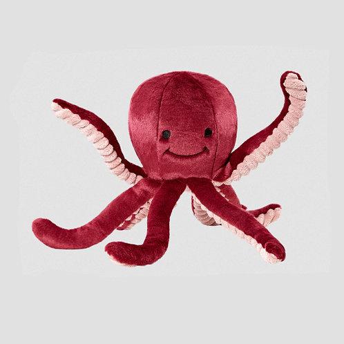 Olympia Octopus (Medium)